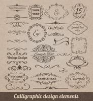 Kalligraphische Gestaltungselemente vektor