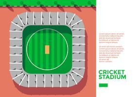 Kricket-Stadion-Draufsicht-Vektor