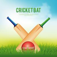 cricket bat illustration vektor