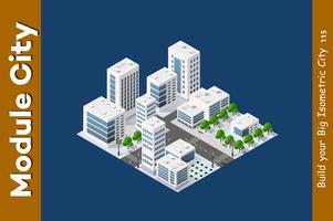 Isometrische 3D-Landschaftspitze vektor