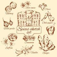Spice Sketch Set vektor
