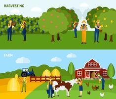 Jordbruk 2 platta horisontella bannersammansättning vektor