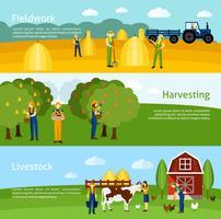 Landwirtschaft 3 flache horizontale Banner gesetzt