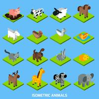 isometriska djur sätts