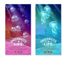 Bunte Unterwasserfahnen eingestellt