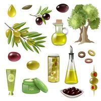 Olivgrüner Karikatur-Satz vektor