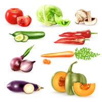 Grönsaker dekorativa ikoner samling vektor