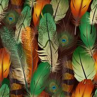 Fjädrar realistiskt mönster vektor