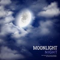 Månskens natt illustration vektor