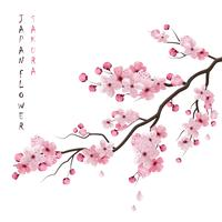 Realistische Sakura-Niederlassung vektor