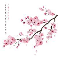 Realistisk Sakura Branch vektor