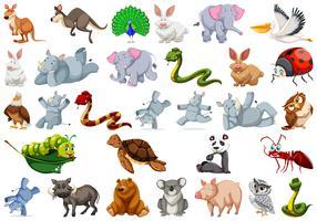 Sats av vilddjur