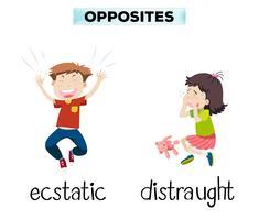 Engelska motsatta ord av extatisk och distraught vektor