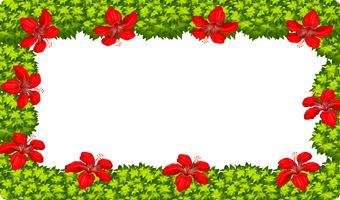Ein Hibiskus-Blumenrahmen