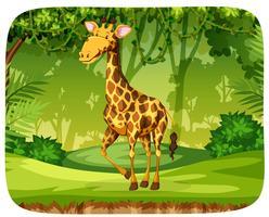 En giraff i skogen vektor