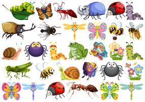 Sats av insekt karaktär