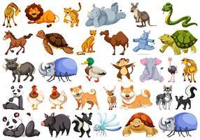 Set av djurtecken