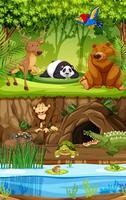Wildes Tier im Dschungel vektor