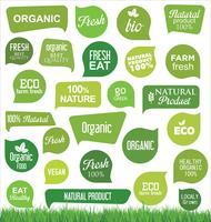 Eco Vintage Labels Bio Vorlage Ökologie Retro-Design gesetzt vektor