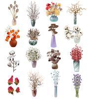 Sammlung von trockenen Blumensträußen in Vasen vektor