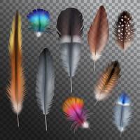 Fjädrar Realistisk Transparent Set