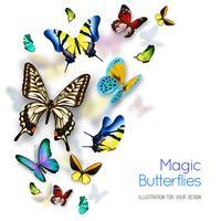 Schmetterling Hintergrund