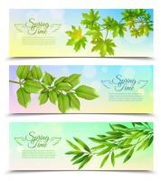 Horisontella Banderoller Set Med Gröna Grenar vektor
