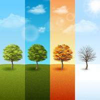 Vierjahreszeiten-Baum-Fahnenset vektor