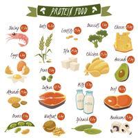 flache Ikonen des proteinreichen Lebensmittels eingestellt vektor