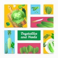 Ekologiska Grönsaker Örter Färgglada Headers Poster vektor