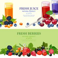 Fresh Berries 2 Flat Banners Set