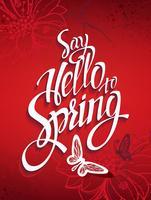 Roter Frühlingshintergrund mit Zeichen und Kolibris und Schmetterlingen.