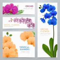 Blommande orkidéer Realistiska banderoller Set