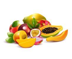 Fruchtige tropische Bündelzusammensetzung vektor
