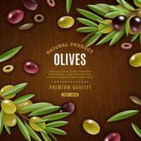 Natürliche Oliven Hintergrund vektor