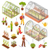 Isometrisk 3d Greenhouse Icon Set