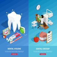 Zahnmedizin isometrische vertikale Banner