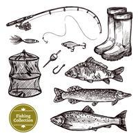 Fischen-Skizzensatz vektor