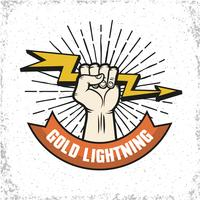 blixtlogo emblem