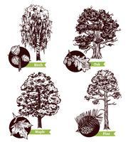 sketch tree lämnar designkoncept