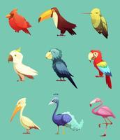 Exotiska Tropiska Fåglar Retro Ikoner Set