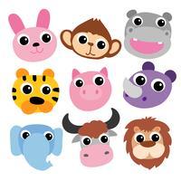 Tiere Kopf