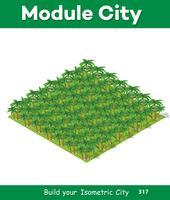 Isometrisk 3d park med en grön