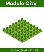 Isometrischer Park 3d mit einem Grün