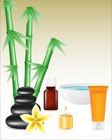 spa zen stenar och bambu