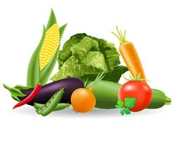 Stillleben mit Gemüse-Vektor-Illustration