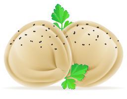 Knödel Pelmeni Teig mit einer Füllung und grünen Vektor-Illustration