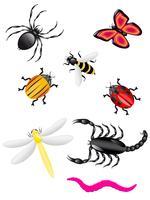 skalbaggar och insekter färger vektor