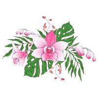 Exotiska tropiska blommiga buketter paphiopedilum orkidé blommor vektor design set.