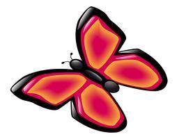 fjäril vektor